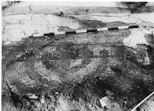 Menorah on the mosaic - courtesy of Reuven Or Kibbutz Tirat Tzvi archive © <i> synagogues.kinneret.ac.il </i>