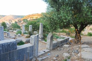 General view, looking to north east - Gilead Peli all rights reserved © <i> synagogues.kinneret.ac.il </i>