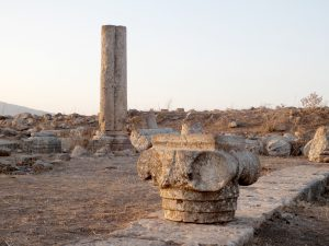 Looking North-West. Gilead Peli all rights reserved © <i> synagogues.kinneret.ac.il </i>