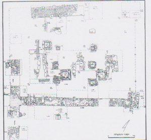 תוכנית החפירות. בירן ושוהם 1987, 199. באדיבות החברה לחקירת ארץ ישראל. © <i> synagogues.kinneret.ac.il </i>