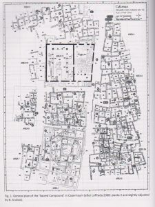 General plan Arubas and Talgam 2014: 238, courtesy of Benny Arubas © <i> synagogues.kinneret.ac.il </i>