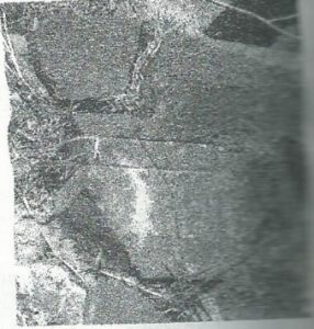 Maoz 1995: plate 114 fig. 4, courtesy of Zvi Maoz © <i> synagogues.kinneret.ac.il </i>