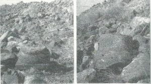 Maoz 1995: plate 113 fig. 1-2, courtesy of Zvi Maoz © <i> synagogues.kinneret.ac.il </i>