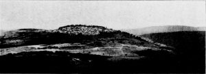 Kohl and Watzinger 1916:107 © <i> synagogues.kinneret.ac.il </i>