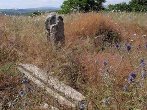 מבט כללי לצפון מערב. באדיבות מרדכי אביעם. © <i> synagogues.kinneret.ac.il </i>