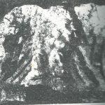 Maoz 1995: plate 84 fig. 2, courtesy of Zvi Maoz © <i> synagogues.kinneret.ac.il </i>