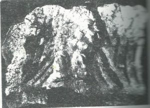 מעוז 1995: לוח 2:84, באדיבות צבי מעוז © <i> synagogues.kinneret.ac.il </i>