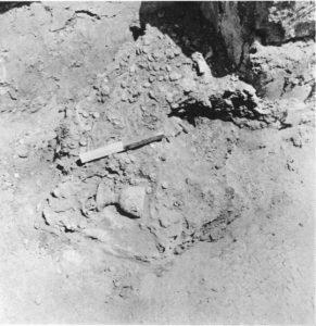 Barag and Porat 1970: 99. Courtesy of the Israel Exploration Society. © <i> synagogues.kinneret.ac.il </i>