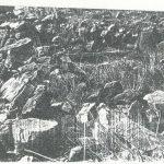 Maoz 1995: plate 111 fig. 2, courtesy of Zvi Maoz © <i> synagogues.kinneret.ac.il </i>