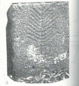 Maoz 1995: plate 133 fig. 5, courtesy of Zvi Maoz © <i> synagogues.kinneret.ac.il </i>