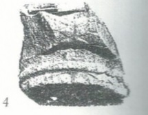 Maoz 1995: plate 22 fig. 4, courtesy of Zvi Maoz © <i> synagogues.kinneret.ac.il </i>