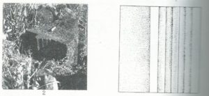 Maoz 1995: plate 23 fig. 2, courtesy of Zvi Maoz © <i> synagogues.kinneret.ac.il </i>