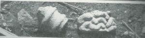 מעוז 1995: לוח 6,7:35, באדיבות צבי מעוז © <i> synagogues.kinneret.ac.il </i>
