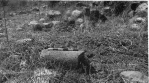 קטע של עמוד בעין הידיד. הסקר הארכיאולוגי של ישראל, רשות העתיקות (ראה קישור למטה). מפה 46, אתר 61, תמונה 1. באדיבות צבי גל ורשות העתיקות. © <i> synagogues.kinneret.ac.il </i>