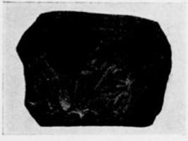Kohl and Watzinger 1916:67 © <i> synagogues.kinneret.ac.il </i>