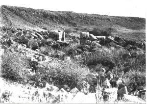 מעוז 1995 לוח 77.1, צילום שי שוויג © <i> synagogues.kinneret.ac.il </i>