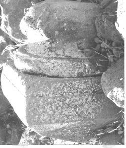 מעוז 1995, לוח 21.3 © <i> synagogues.kinneret.ac.il </i>