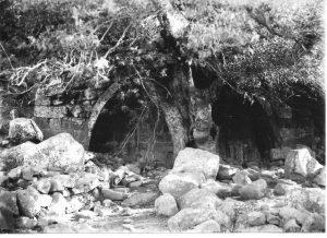 מעוז 1995 לוח 77.2, צילום שי שוויג © <i> synagogues.kinneret.ac.il </i>